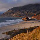 Big Sur Beach by Stephen Vecchiotti