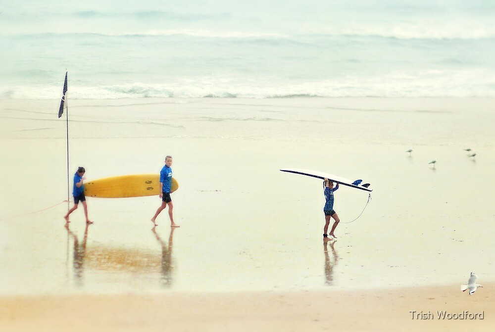 Seaspray - Colour by Trish Woodford