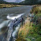 Cascade Creek - Milford Rd by Michael Treloar