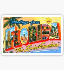 Greetings From Florida Vintage Postcard Sticker Sticker