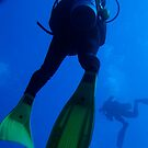 Two scuba divers swimming by Sami Sarkis