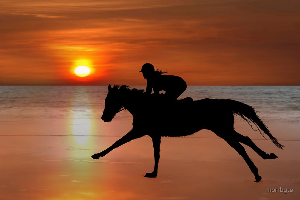 silhouette of a horse and rider galloping on beach by morrbyte