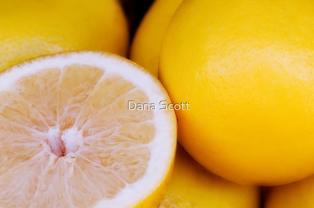 Fresh Grapefruit by Dana Scott