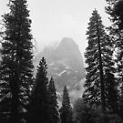 Cathedral Spires, Winter Storm, Yosemite Valley, California by Pete Paul