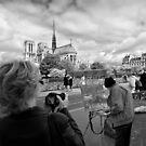 Reinvention and Interpretation - Notre Dame Paris by Norman Repacholi