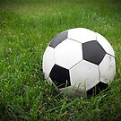 Old Soccer Ball in the Grass by CuteNComfy