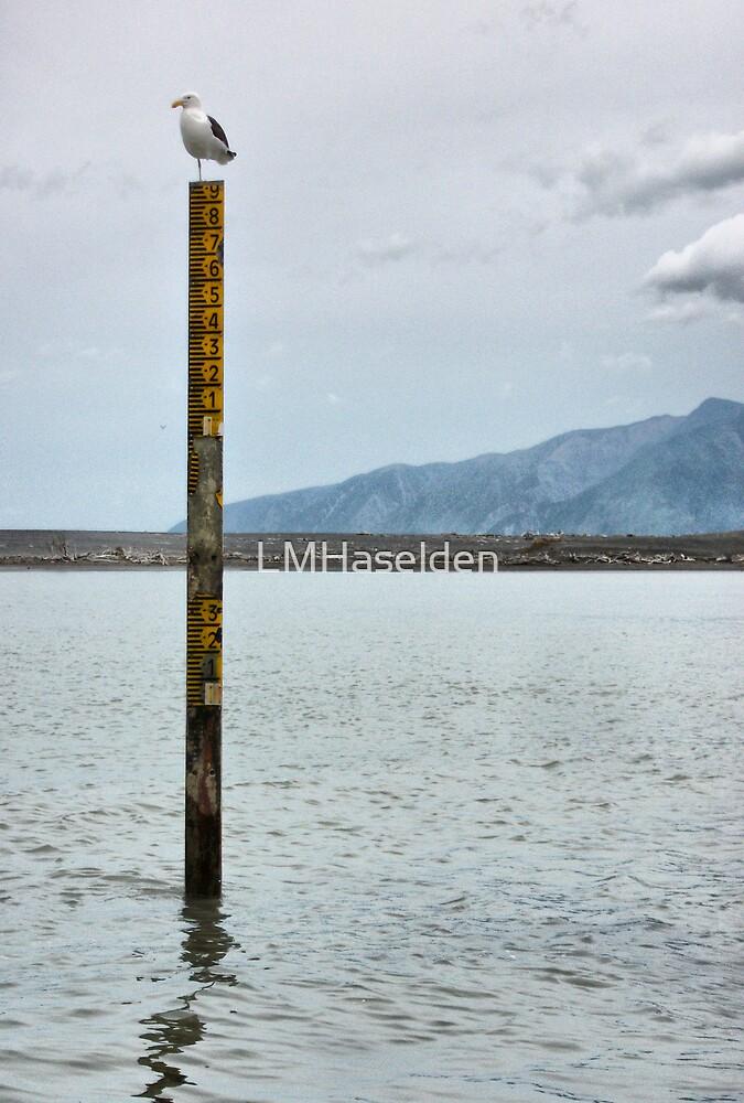 Lake Ferry. South Wairarapa coast. New Zealand. by Lynne Haselden