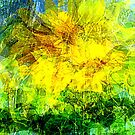 Summer wind gust by Pauli Hyvönen