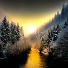 My Kind Of Place ~ Upper McKenzie River ~ by Charles & Patricia   Harkins ~ Picture Oregon