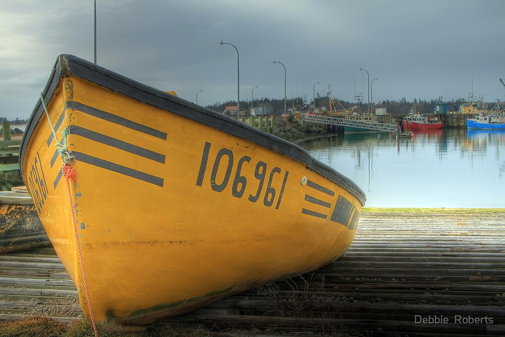 Lone Dory by Debbie  Roberts