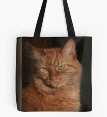 Inside Looking Out ~ Tote Bag