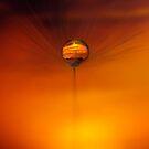 Dandelion Sunset by Gazart