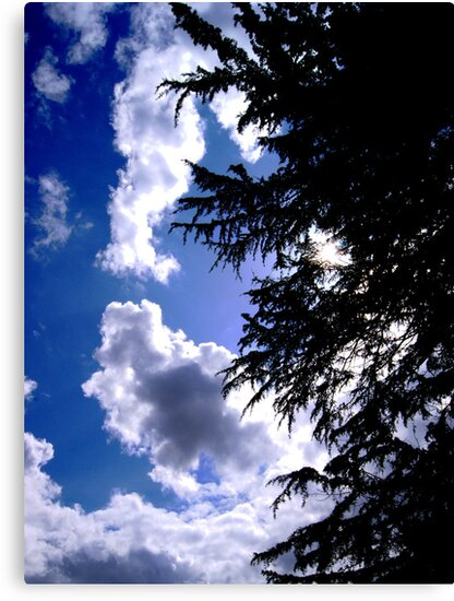beauty of the sky by vampireegirll