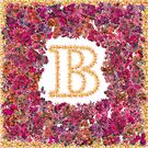 """""""B"""" is for Begonia by mrthink"""