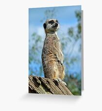 On Watch ! Greeting Card