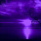 Purple Night by Greta  McLaughlin
