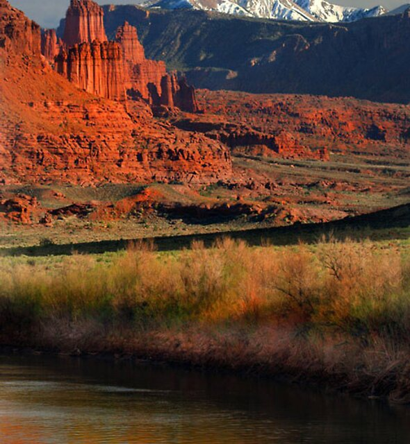Fisher Towers by Steve  Taylor