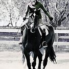 A rider on a lovely tall horse by olivera kenic