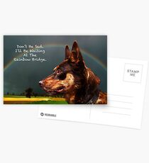Sympathy Card For Loss Of Pet Dog Postcards
