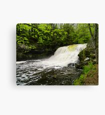Wadsworth Big Falls Canvas Print