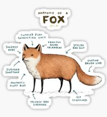 Anatomy of a Fox Sticker
