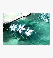 White Flowers 2 Photographic Print