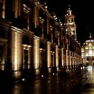 Mexico: Night in the City by LightningArts