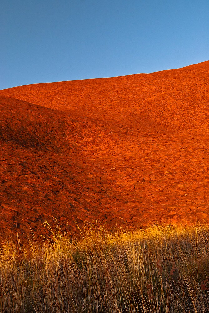 Colours of the Desert by Dieter Tracey