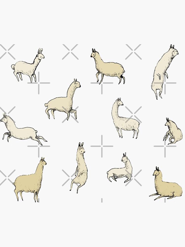 Llamas by SophieCorrigan