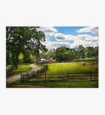 Country - The pasture  Photographic Print