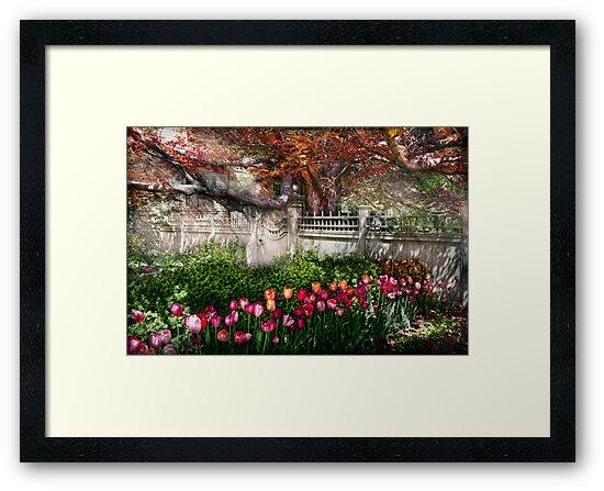 Spring - Gate - My Spring garden  by Michael Savad