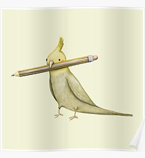 Cockatiel & Pencil Poster