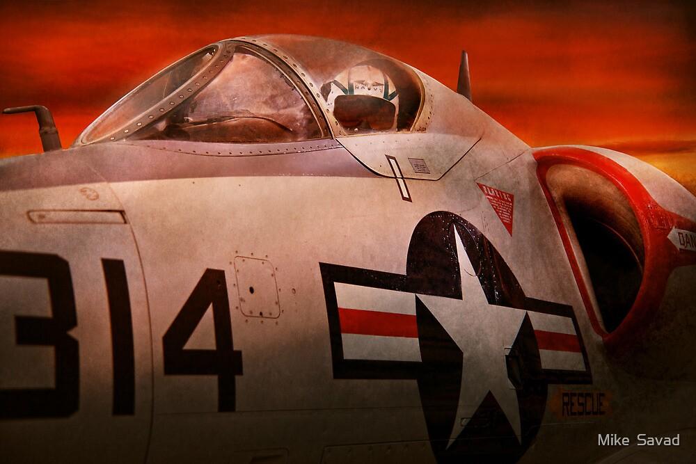 Plane - Pilot - Airforce - Go get em Tiger  by Michael Savad