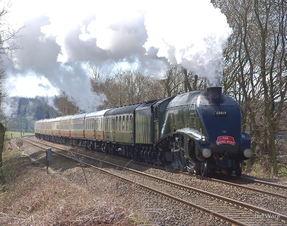 60019 'Bittern' passing Shere, Surrey by Ian Ware