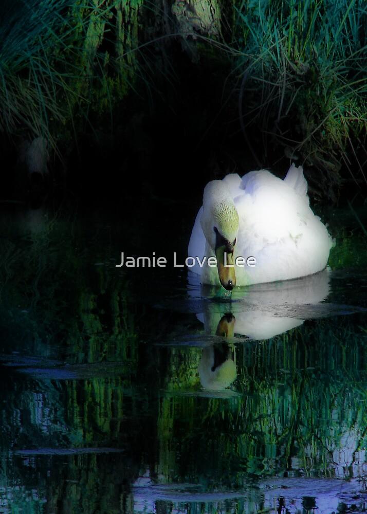 Whimsical Waters by Jamie Lee