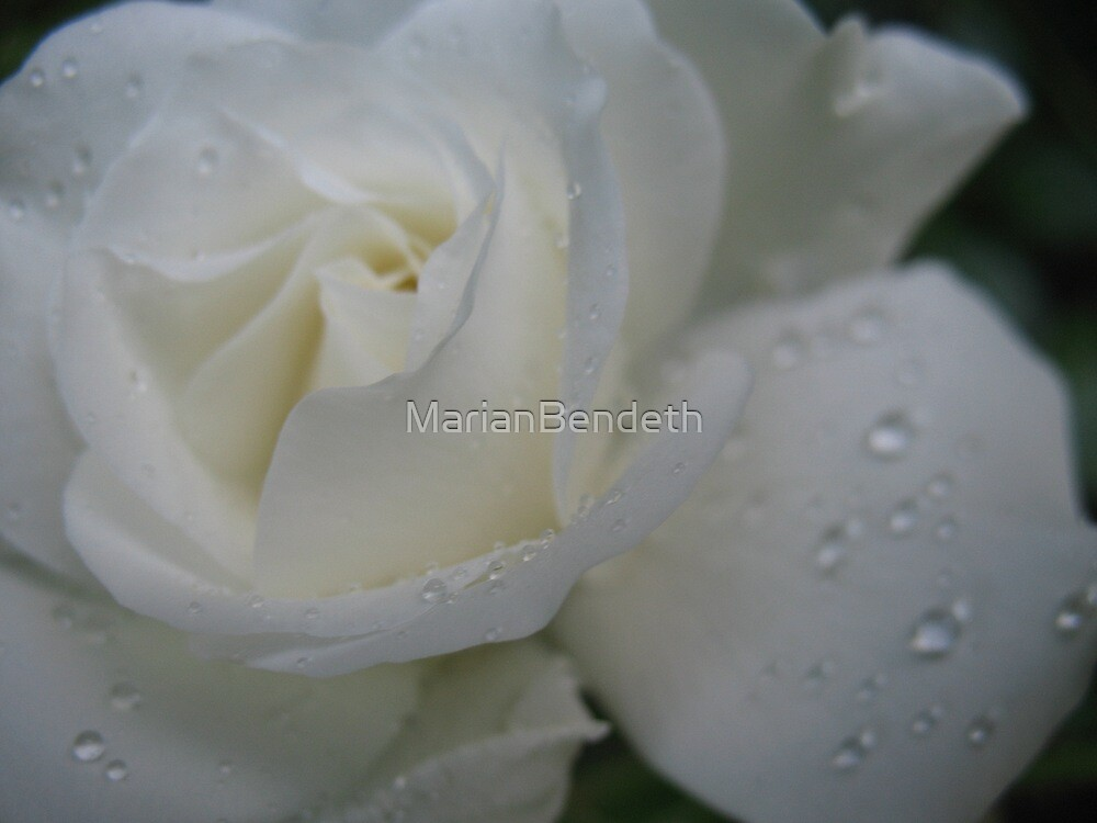 Refresh my memory by MarianBendeth