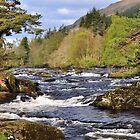 Falls Of Dochart, Killin, Scotland by Jim Wilson