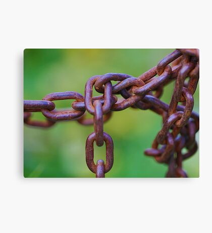 Links on green Canvas Print