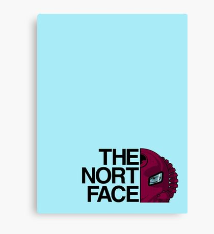 The Nort Face !!STAK!! Canvas Print
