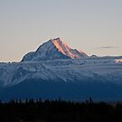 Mt Cook at Sunrise by Macanz