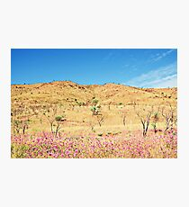 Land Flower Sky Photographic Print