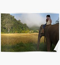 Elephant and mahout  Poster