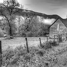 Barn in the Valley by Tracy Riddell