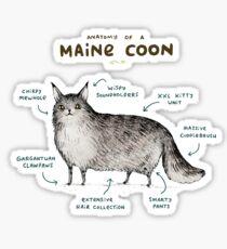 Anatomy of a Maine Coon Sticker