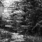 rustle by Marie Monroe