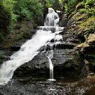 Raymondskill Falls by Sally Kady