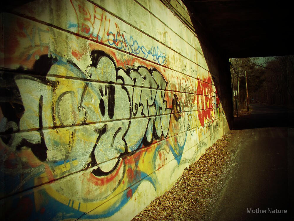 Graffiti under the Bridge by MotherNature