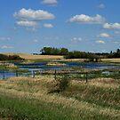 Alberta Waters  by Joyce Peters