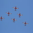 The Roulettes by Michelle Cocking