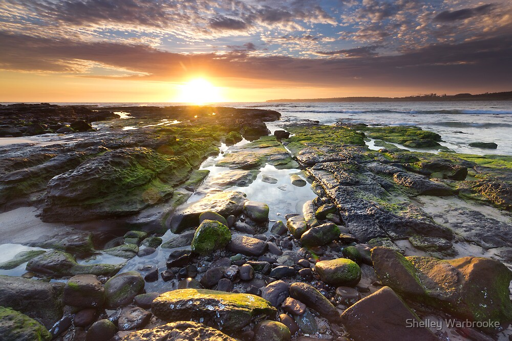 Rays and Ripples by Shelley Warbrooke